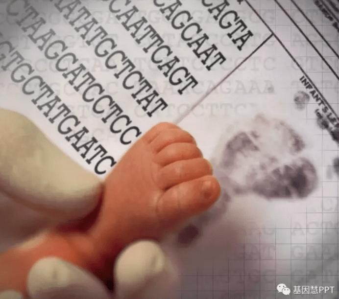 新生儿基因检测
